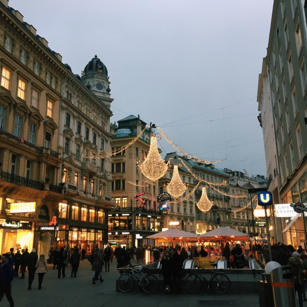 picture of vienna in the winter