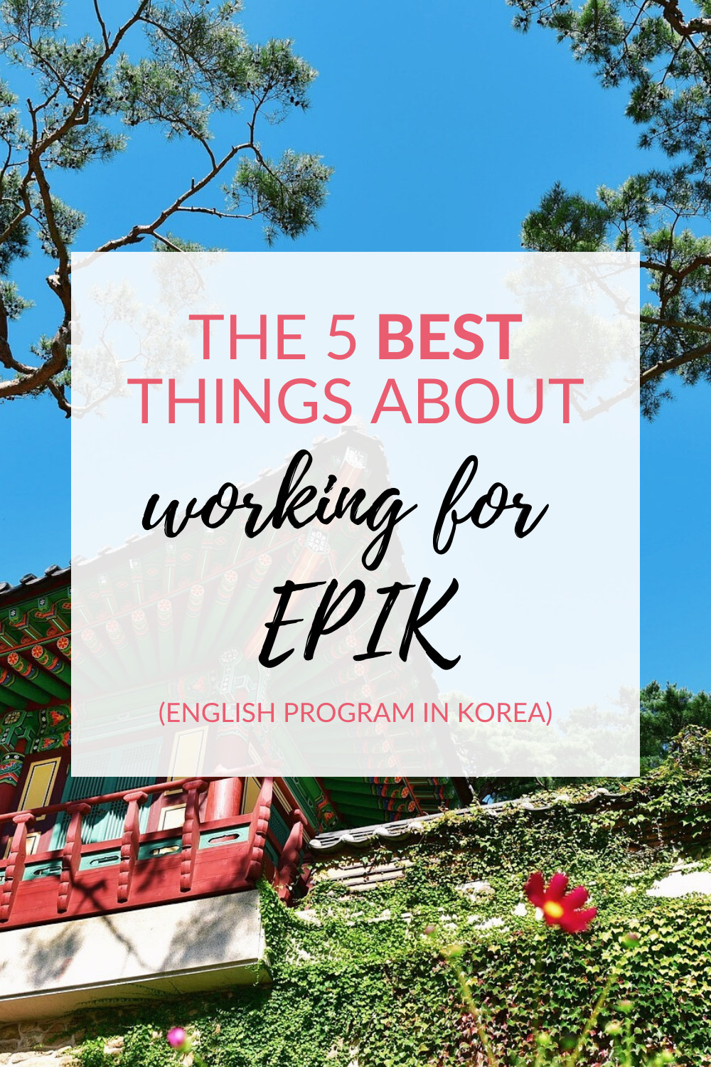 The 5 best things about working for EPIK